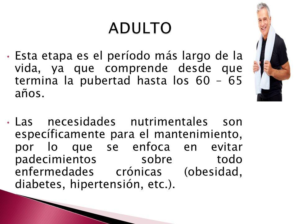 Esta etapa es el período más largo de la vida, ya que comprende desde que termina la pubertad hasta los 60 – 65 años. Las necesidades nutrimentales so
