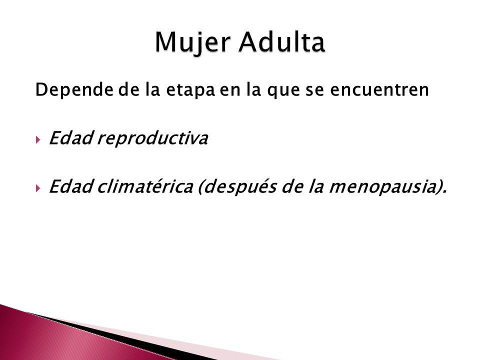 Depende de la etapa en la que se encuentren Edad reproductiva Edad climatérica (después de la menopausia).