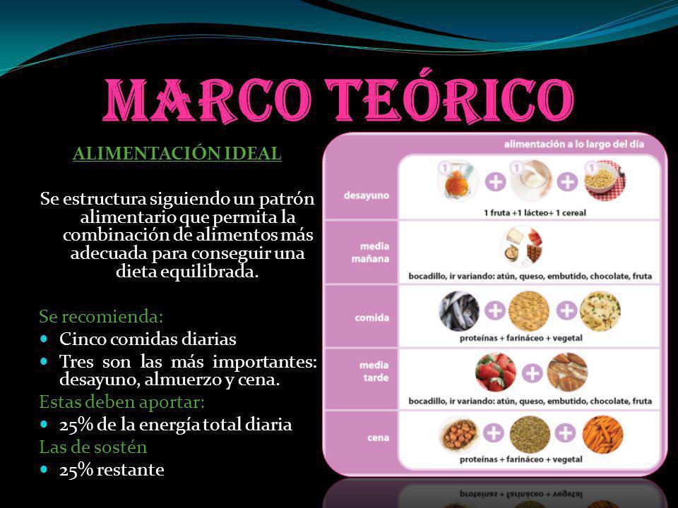 Marco teórico ALIMENTACIÓN IDEAL Se estructura siguiendo un patrón alimentario que permita la combinación de alimentos más adecuada para conseguir una