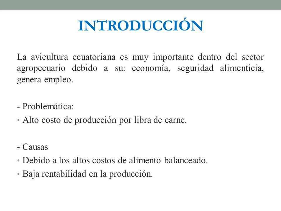 INTRODUCCIÓN La avicultura ecuatoriana es muy importante dentro del sector agropecuario debido a su: economía, seguridad alimenticia, genera empleo. -