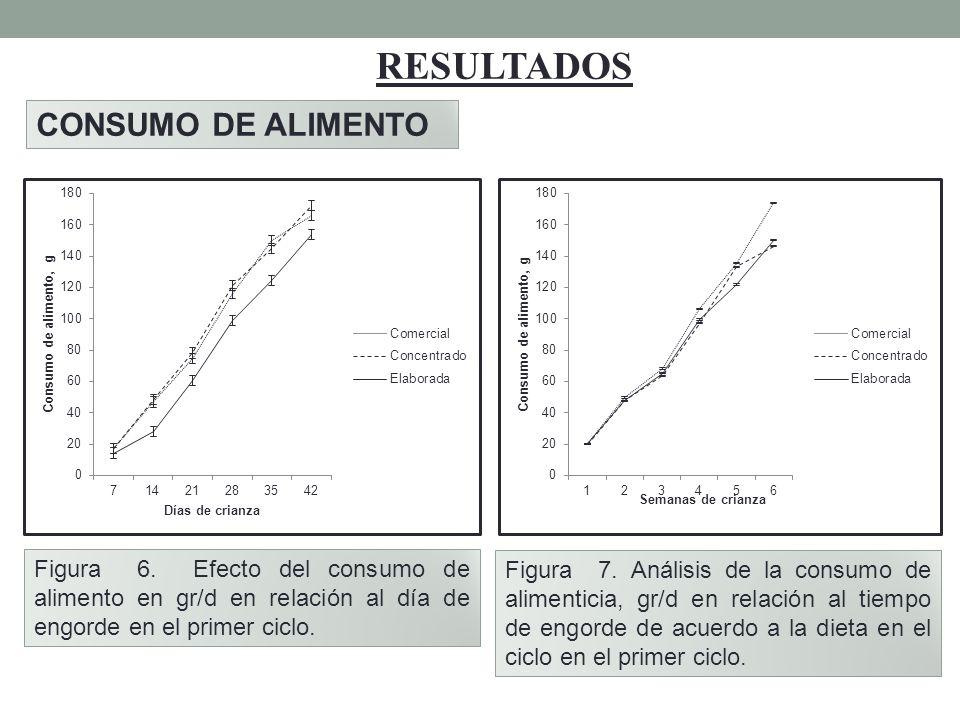 RESULTADOS CONSUMO DE ALIMENTO Figura 6. Efecto del consumo de alimento en gr/d en relación al día de engorde en el primer ciclo. Figura 7. Análisis d