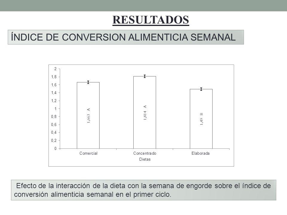 RESULTADOS ÍNDICE DE CONVERSION ALIMENTICIA SEMANAL Efecto de la interacción de la dieta con la semana de engorde sobre el índice de conversión alimen