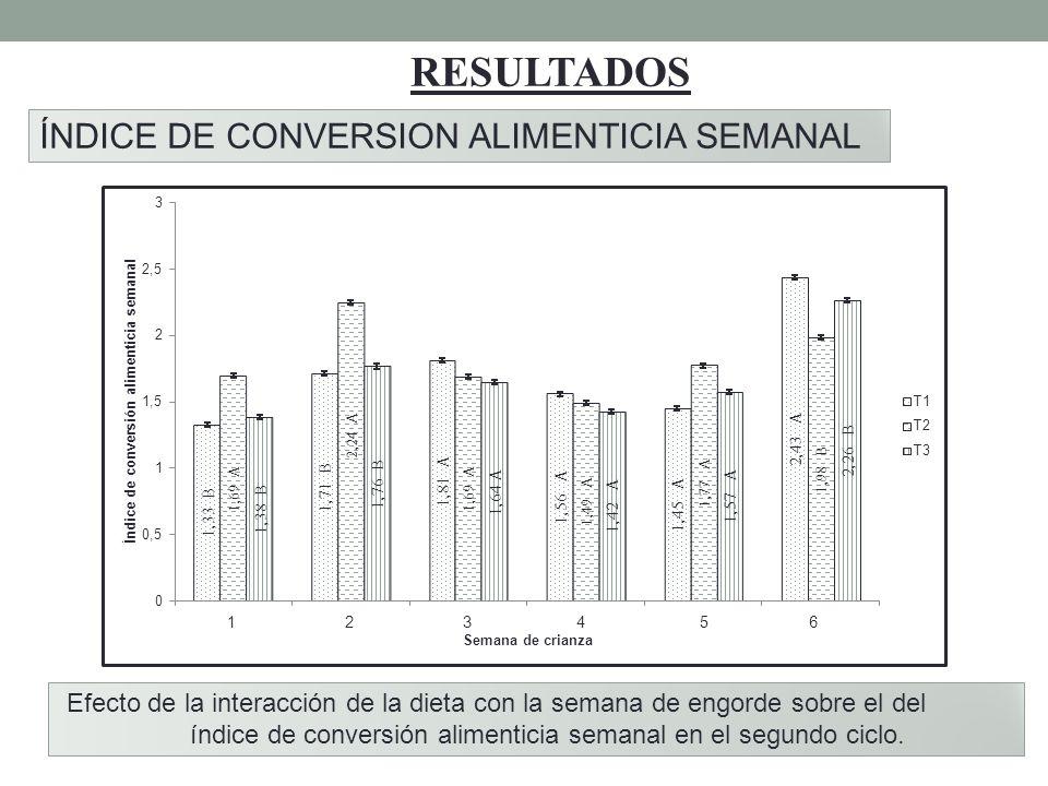 RESULTADOS ÍNDICE DE CONVERSION ALIMENTICIA SEMANAL Efecto de la interacción de la dieta con la semana de engorde sobre el del índice de conversión al
