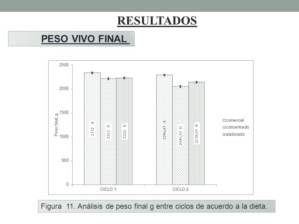RESULTADOS PESO VIVO FINAL Figura 11. Análisis de peso final g entre ciclos de acuerdo a la dieta.