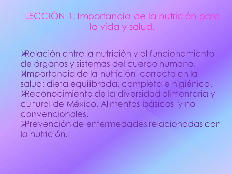 Relación entre la nutrición y el funcionamiento de órganos y sistemas del cuerpo humano. Importancia de la nutrición correcta en la salud: dieta equil