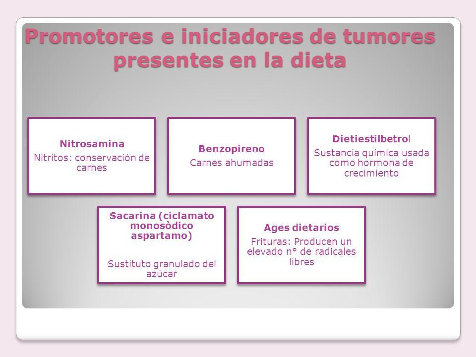 Consecuencias nutricionales de los tratamientos anticancerosos Quimioterapia o Radioterapia AnorexiaDiarreaEstreñimiento Nauseas Vómitos MucositisDisgeusia