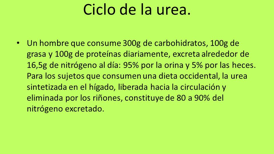 Ciclo de la urea. Un hombre que consume 300g de carbohidratos, 100g de grasa y 100g de proteínas diariamente, excreta alrededor de 16,5g de nitrógeno