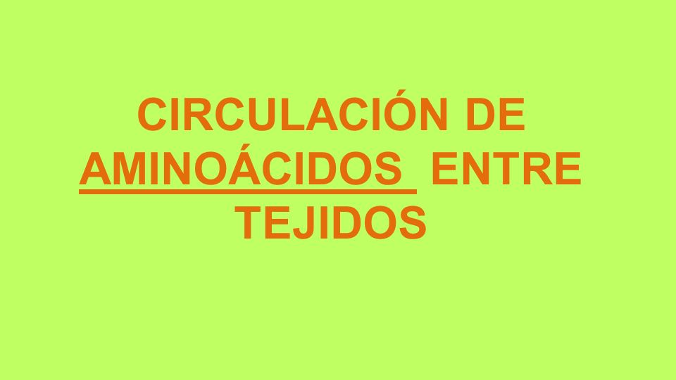 CIRCULACIÓN DE AMINOÁCIDOS ENTRE TEJIDOS