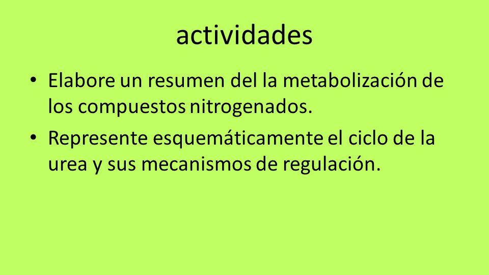 actividades Elabore un resumen del la metabolización de los compuestos nitrogenados. Represente esquemáticamente el ciclo de la urea y sus mecanismos