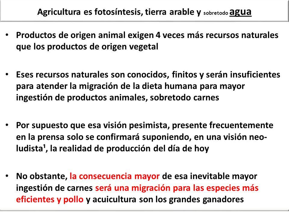 Agricultura es fotosíntesis, tierra arable y sobretodo agua Productos de origen animal exigen 4 veces más recursos naturales que los productos de orig