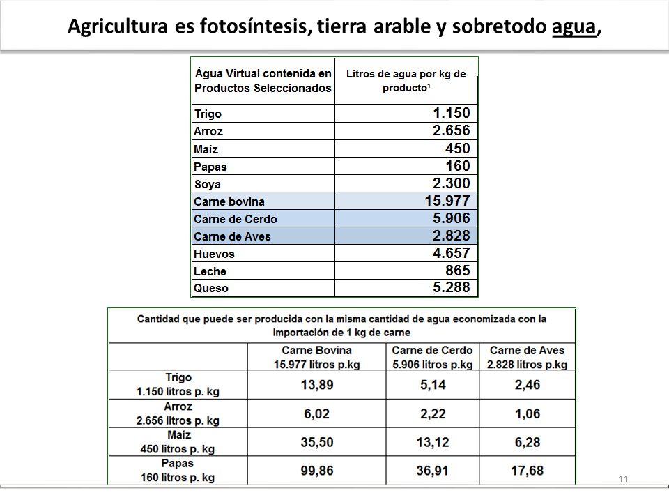 11 Agricultura es fotosíntesis, tierra arable y sobretodo agua,