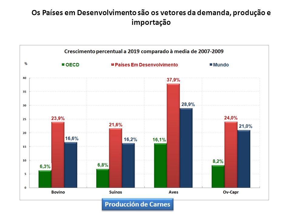 Os Países em Desenvolvimento são os vetores da demanda, produção e importação Producción de Carnes