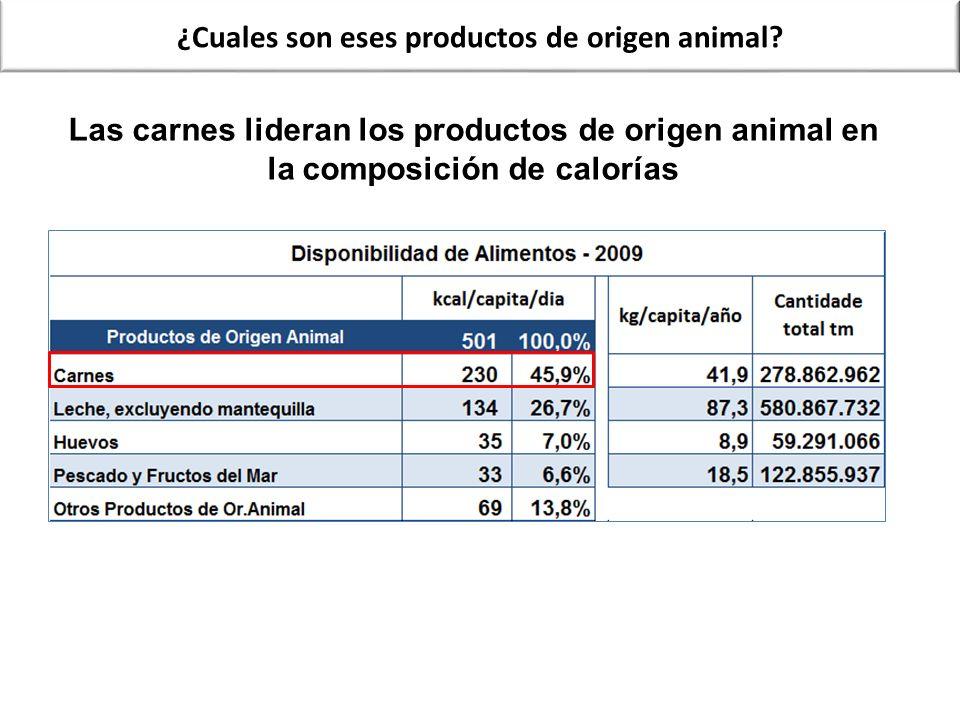 Las carnes lideran los productos de origen animal en la composición de calorías ¿Cuales son eses productos de origen animal?