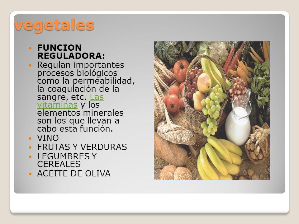 vegetales FUNCION REGULADORA: Regulan importantes procesos biológicos como la permeabilidad, la coagulación de la sangre, etc. Las vitaminas y los ele