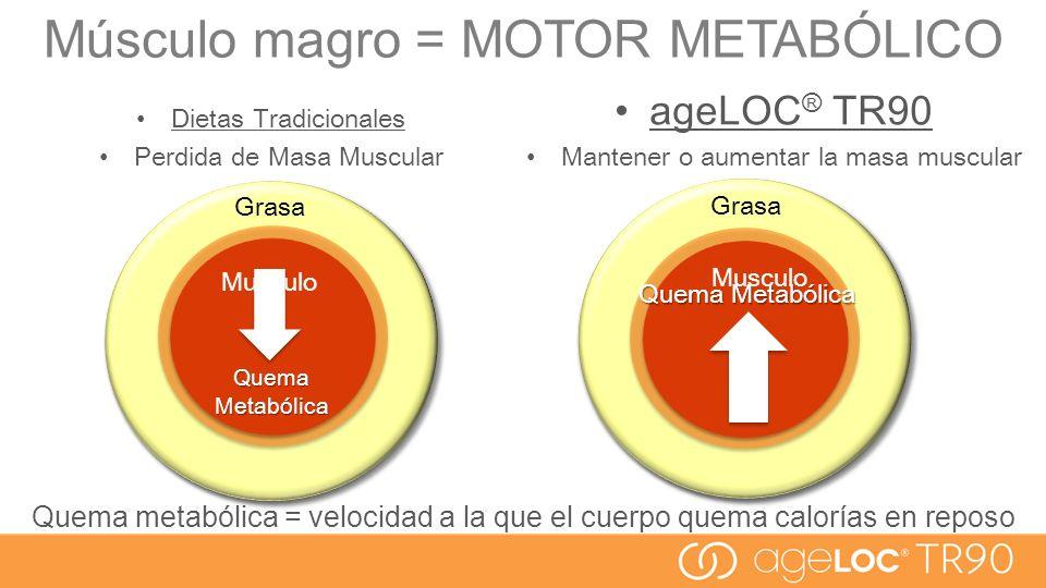 Musculo Quema Metabólica Dietas Tradicionales Perdida de Masa Muscular ageLOC ® TR90 Mantener o aumentar la masa muscular Quema metabólica = velocidad