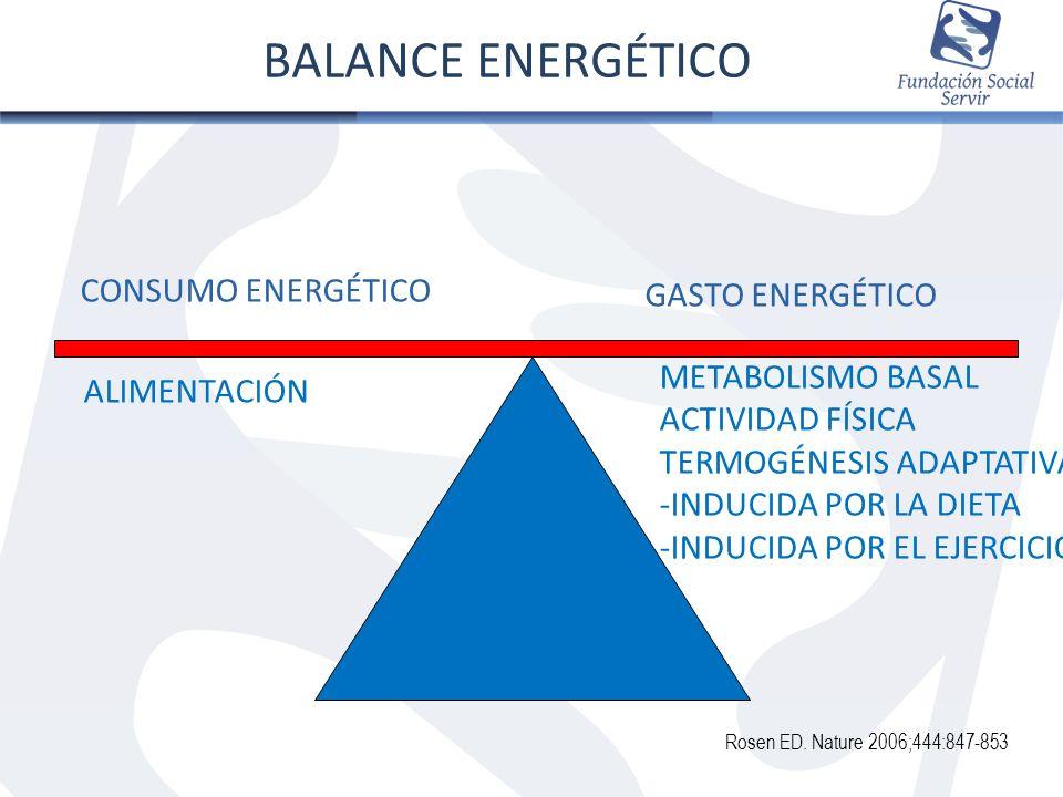 CONSUMO ENERGÉTICO GASTO ENERGÉTICO ALIMENTACIÓN METABOLISMO BASAL ACTIVIDAD FÍSICA TERMOGÉNESIS ADAPTATIVA -INDUCIDA POR LA DIETA -INDUCIDA POR EL EJ