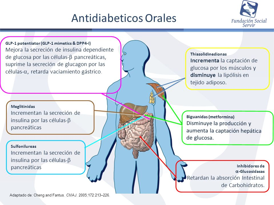 Inhibidores de -Glucosidasas Retardan la absorción Intestinal de Carbohidratos. Thiazolidinedionas Incrementa la captación de glucosa por los músculos