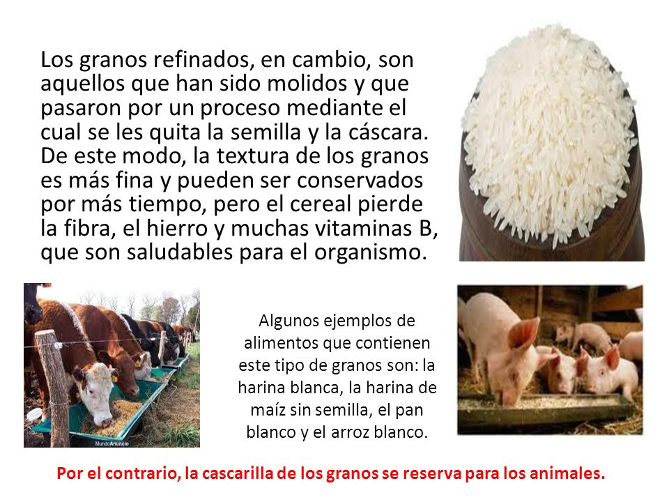 Los granos refinados, en cambio, son aquellos que han sido molidos y que pasaron por un proceso mediante el cual se les quita la semilla y la cáscara.