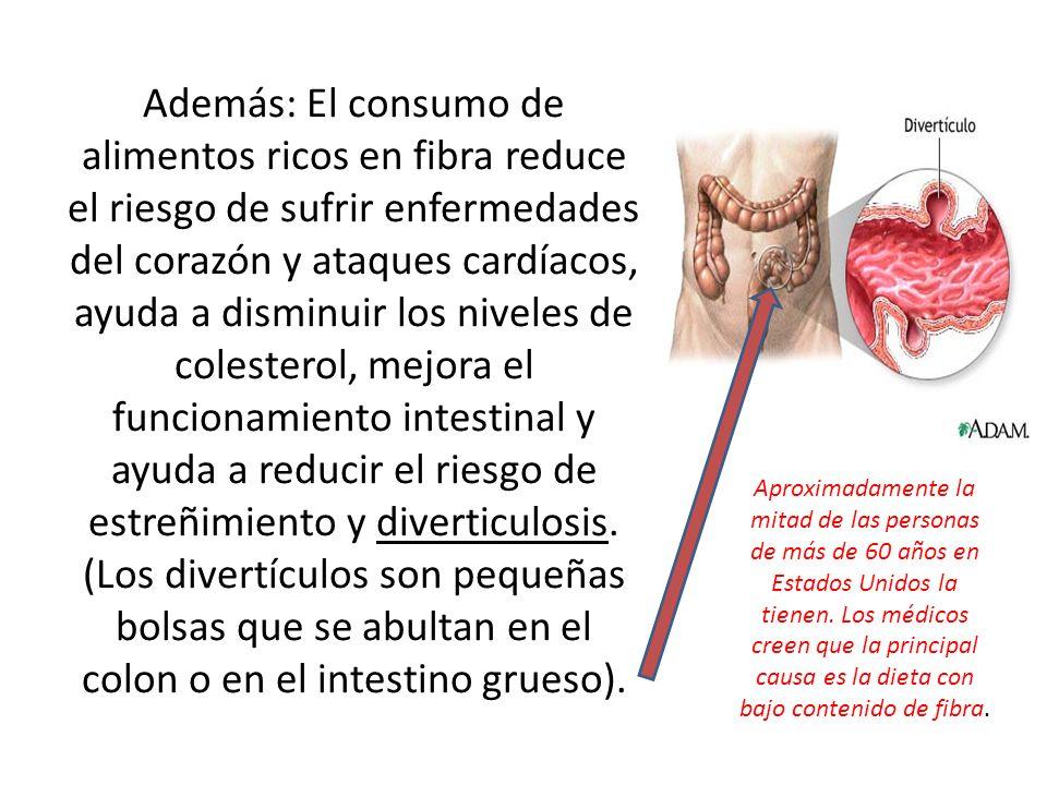 Además: El consumo de alimentos ricos en fibra reduce el riesgo de sufrir enfermedades del corazón y ataques cardíacos, ayuda a disminuir los niveles de colesterol, mejora el funcionamiento intestinal y ayuda a reducir el riesgo de estreñimiento y diverticulosis.