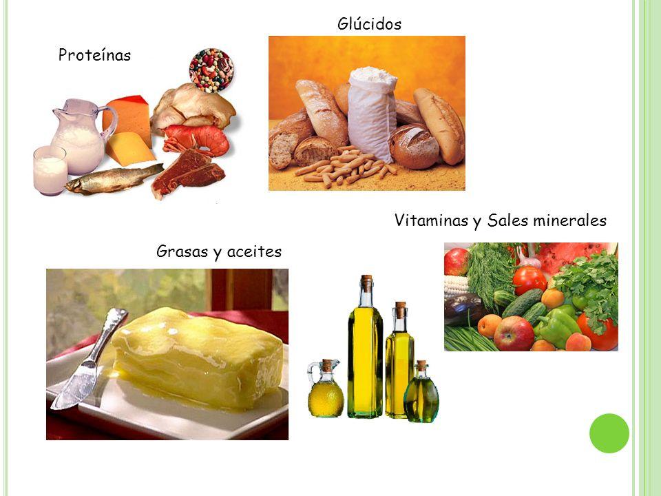 Grasas y aceites Glúcidos Vitaminas y Sales minerales Proteínas