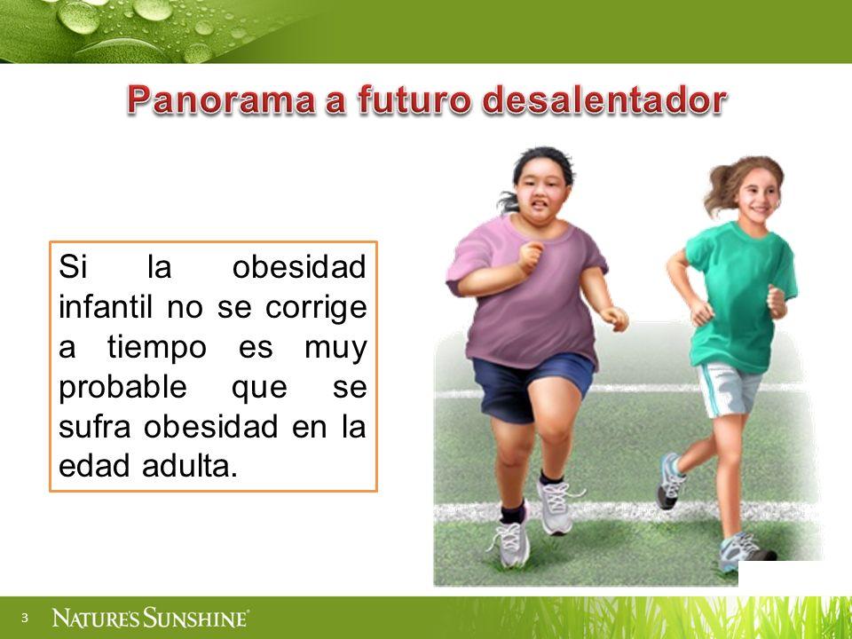 3 Si la obesidad infantil no se corrige a tiempo es muy probable que se sufra obesidad en la edad adulta.