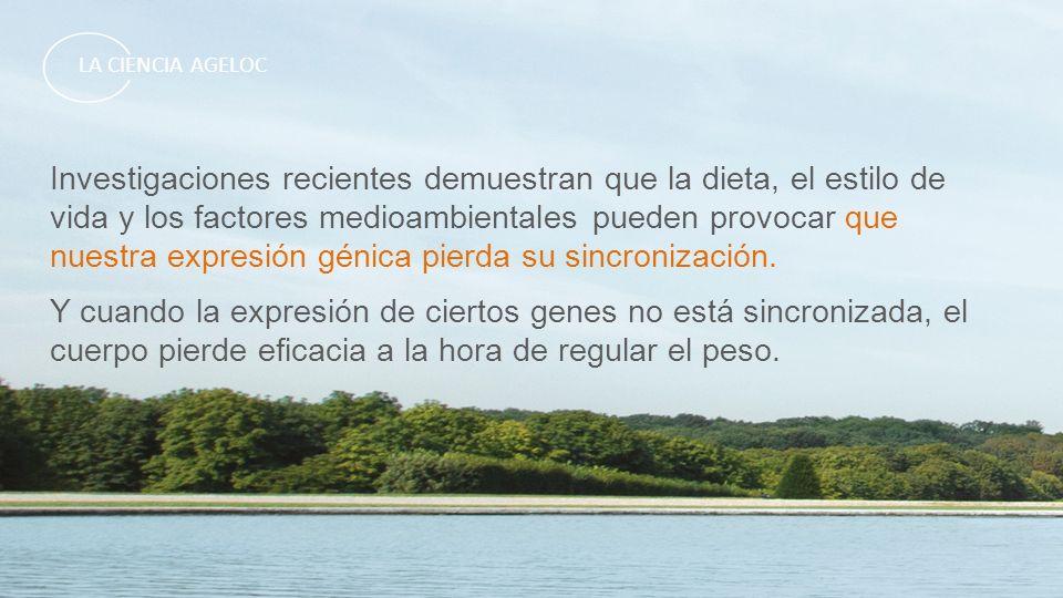 Investigaciones recientes demuestran que la dieta, el estilo de vida y los factores medioambientales pueden provocar que nuestra expresión génica pier