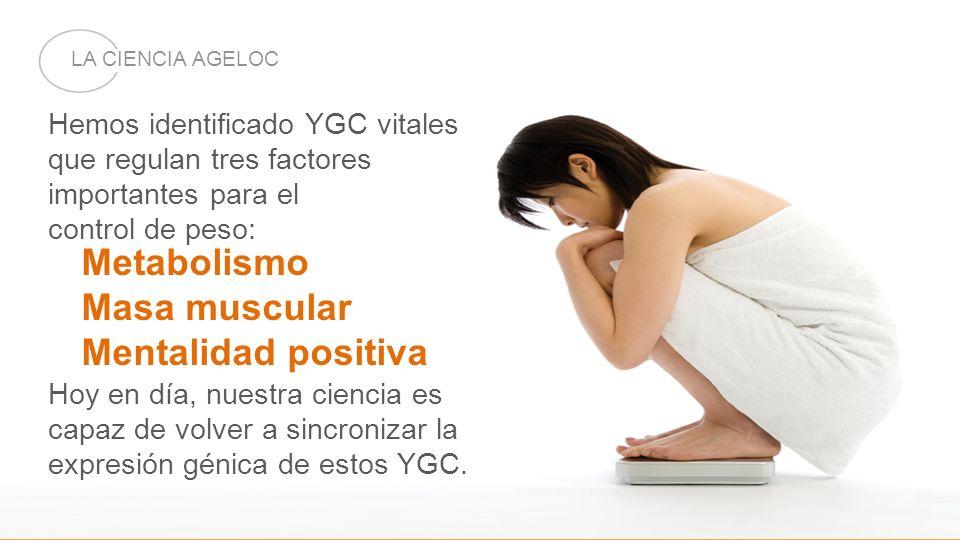 Hemos identificado YGC vitales que regulan tres factores importantes para el control de peso: Hoy en día, nuestra ciencia es capaz de volver a sincron