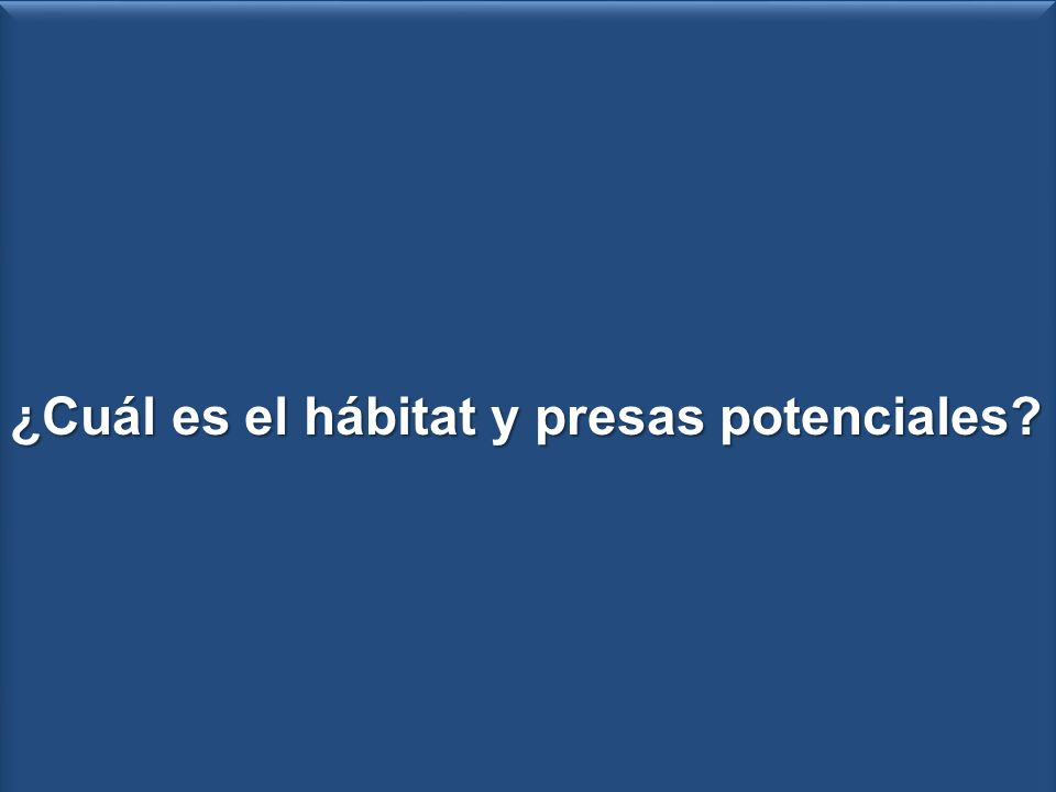 Zonacion submareal 50x50 cm 16 ptos ¿Cuál es el hábitat y presas potenciales.