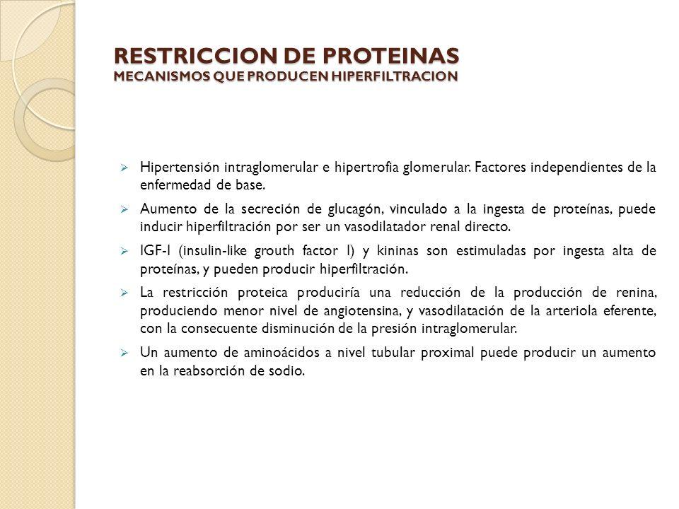 RESTRICCION DE PROTEINAS MECANISMOS QUE PRODUCEN HIPERFILTRACION Hipertensión intraglomerular e hipertrofia glomerular. Factores independientes de la