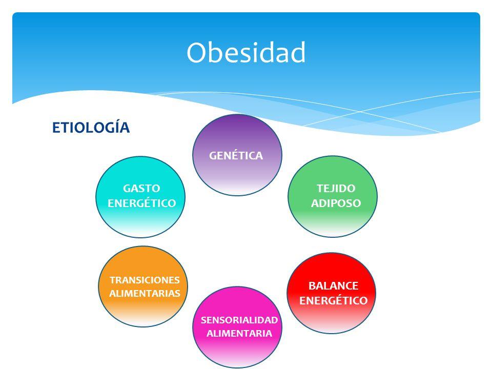 ETIOLOGÍA Obesidad GENÉTICA TEJIDO ADIPOSO BALANCE ENERGÉTICO SENSORIALIDAD ALIMENTARIA TRANSICIONES ALIMENTARIAS GASTO ENERGÉTICO