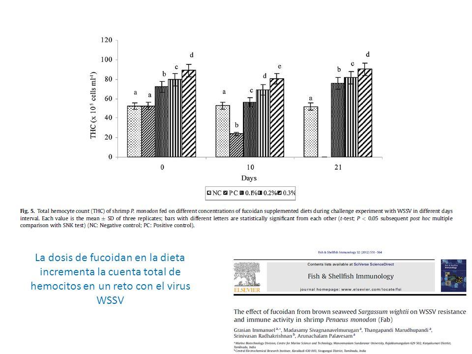 La dosis de fucoidan en la dieta incrementa la cuenta total de hemocitos en un reto con el virus WSSV