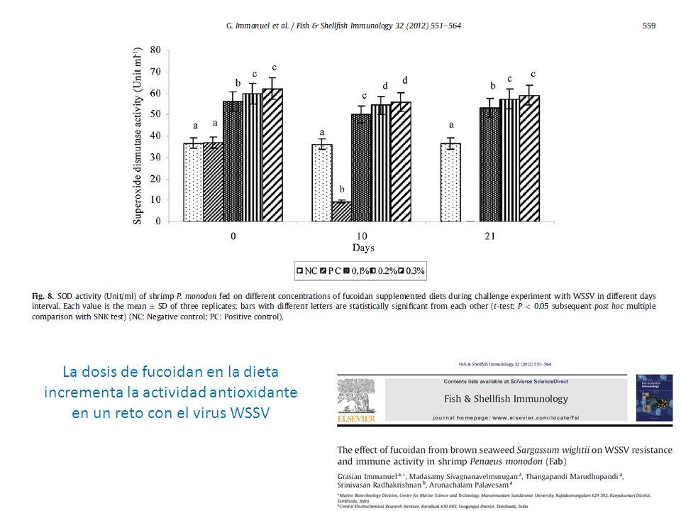 La dosis de fucoidan en la dieta incrementa la actividad antioxidante en un reto con el virus WSSV