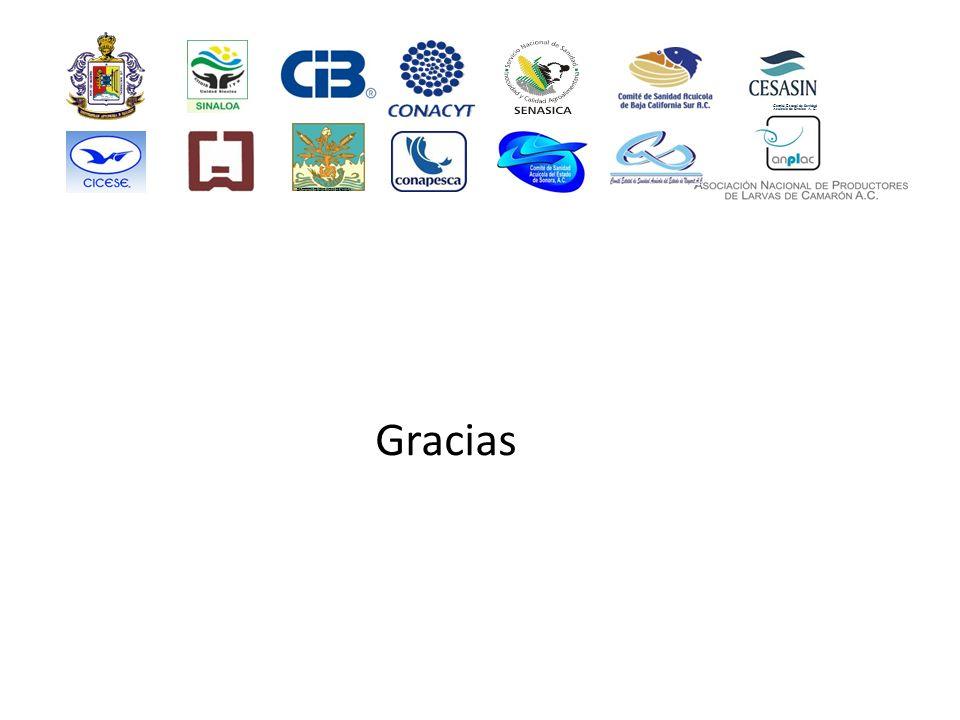 Gracias Comité Estatal de Sanidad Acuícola de Sinaloa A. C. INSTITUTO TECNOLÓGICO DE SONORA