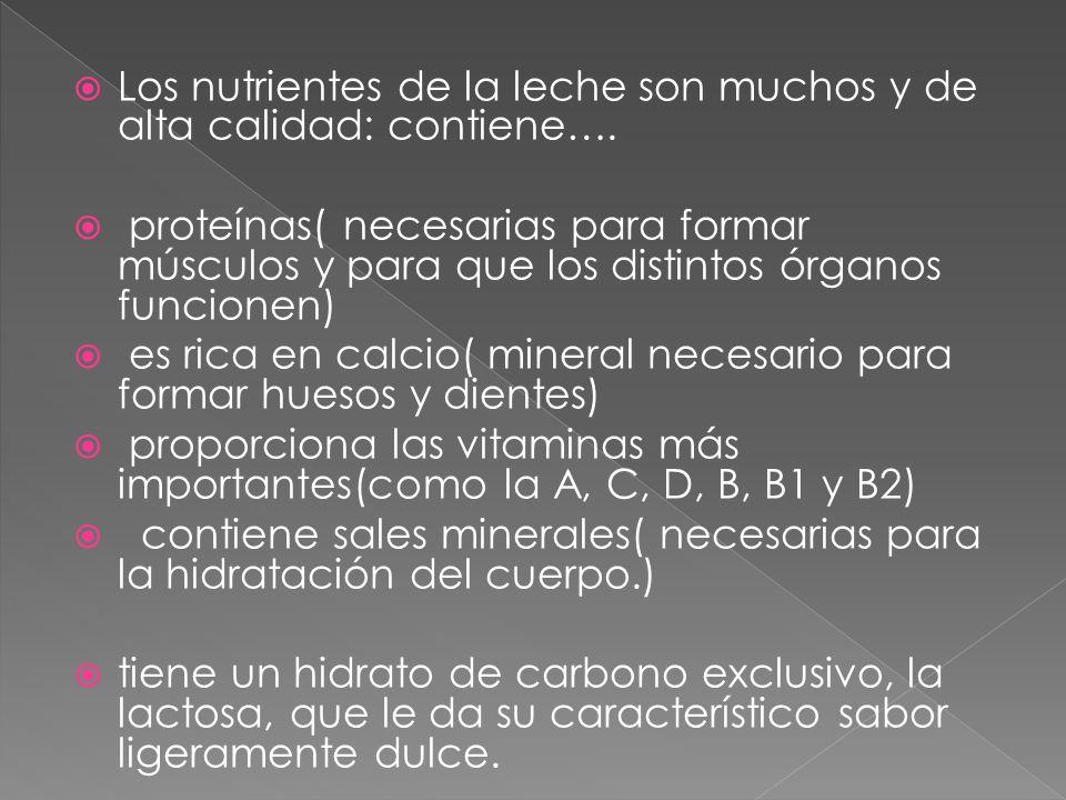a) Vitaminas: Tanto las liposolubles A, D, E y K, como las hidrosolubles, vitaminas C y del grupo B.