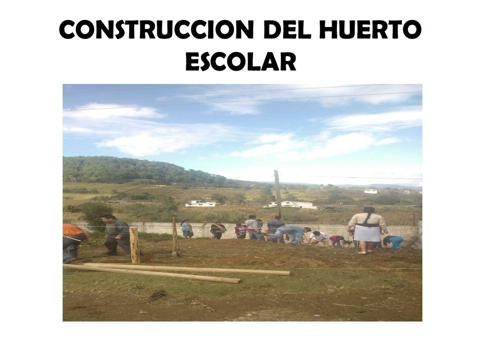 CONSTRUCCION DEL HUERTO ESCOLAR
