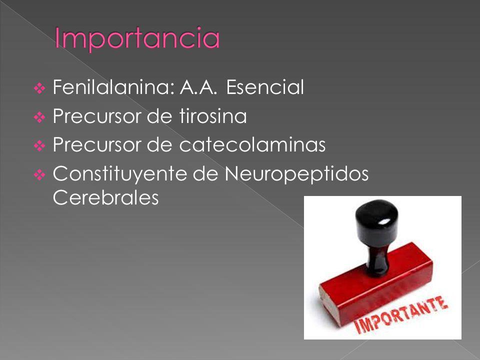 Fenilalanina: A.A.