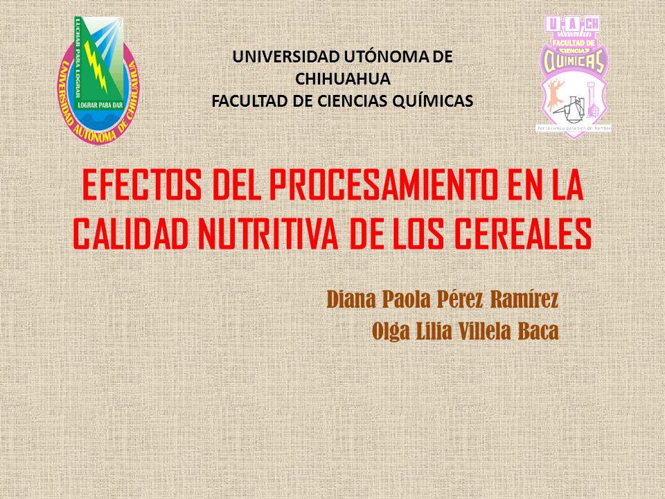 EFECTOS DEL PROCESAMIENTO EN LA CALIDAD NUTRITIVA DE LOS CEREALES Diana Paola Pérez Ramírez Olga Lilia Villela Baca UNIVERSIDAD UTÓNOMA DE CHIHUAHUA F