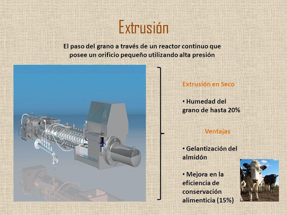 Extrusión El paso del grano a través de un reactor continuo que posee un orificio pequeño utilizando alta presión Extrusión en Seco Humedad del grano
