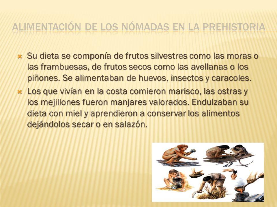 Su dieta se componía de frutos silvestres como las moras o las frambuesas, de frutos secos como las avellanas o los piñones. Se alimentaban de huevos,