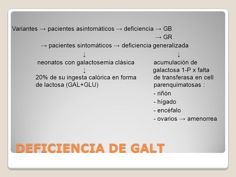 Pacientes normales normales deficiencia GALK GALT Uridinadifosfato glucosa GALE Uridinadifosfatogalactosa Pacientes deficiencia generalizada GALE No formación La restricción de galactosa en la dieta debe ser parcial para q pueda haber síntesis de uridinadifosfatogalactosa a partir de galactosa.
