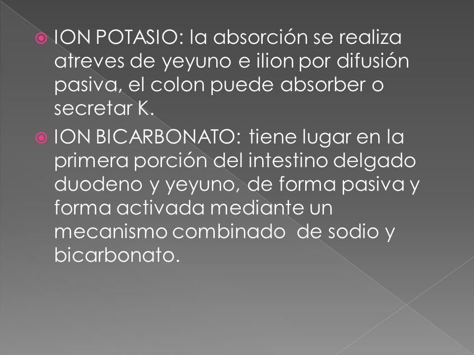 ION POTASIO: la absorción se realiza atreves de yeyuno e ilion por difusión pasiva, el colon puede absorber o secretar K. ION BICARBONATO: tiene lugar