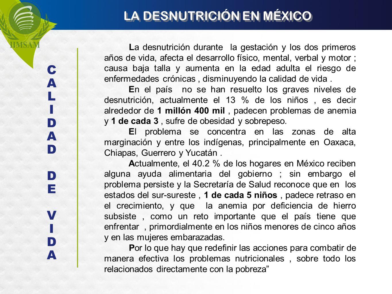 LA DESNUTRICIÓN EN MÉXICO La desnutrición durante la gestación y los dos primeros años de vida, afecta el desarrollo físico, mental, verbal y motor ;