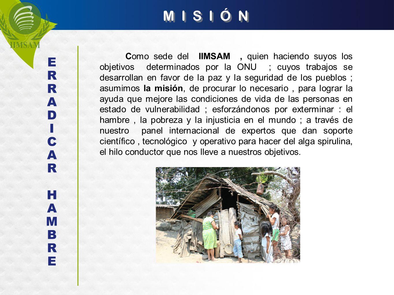 M I S I Ó N Como sede del IIMSAM, quien haciendo suyos los objetivos determinados por la ONU ; cuyos trabajos se desarrollan en favor de la paz y la s