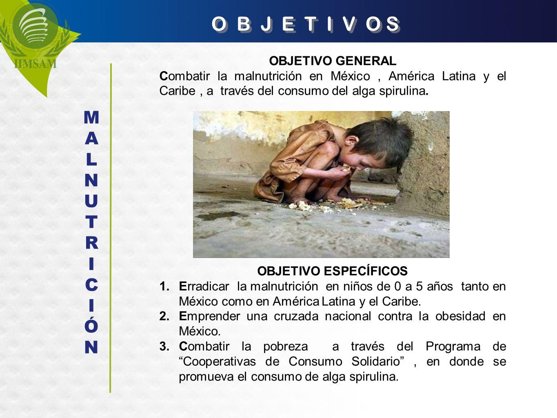 O B J E T I V O S OBJETIVO GENERAL Combatir la malnutrición en México, América Latina y el Caribe, a través del consumo del alga spirulina. OBJETIVO E