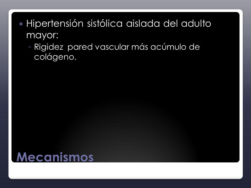 Mecanismos Hipertensión sistólica aislada del adulto mayor: Rigidez pared vascular más acúmulo de colágeno.