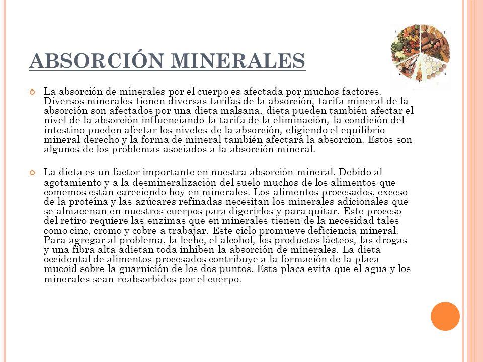 ABSORCIÓN MINERALES La absorción de minerales por el cuerpo es afectada por muchos factores. Diversos minerales tienen diversas tarifas de la absorció