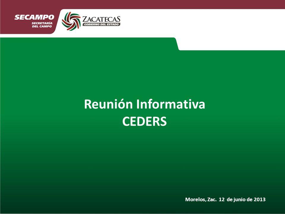 Reunión Informativa CEDERS Morelos, Zac. 12 de junio de 2013