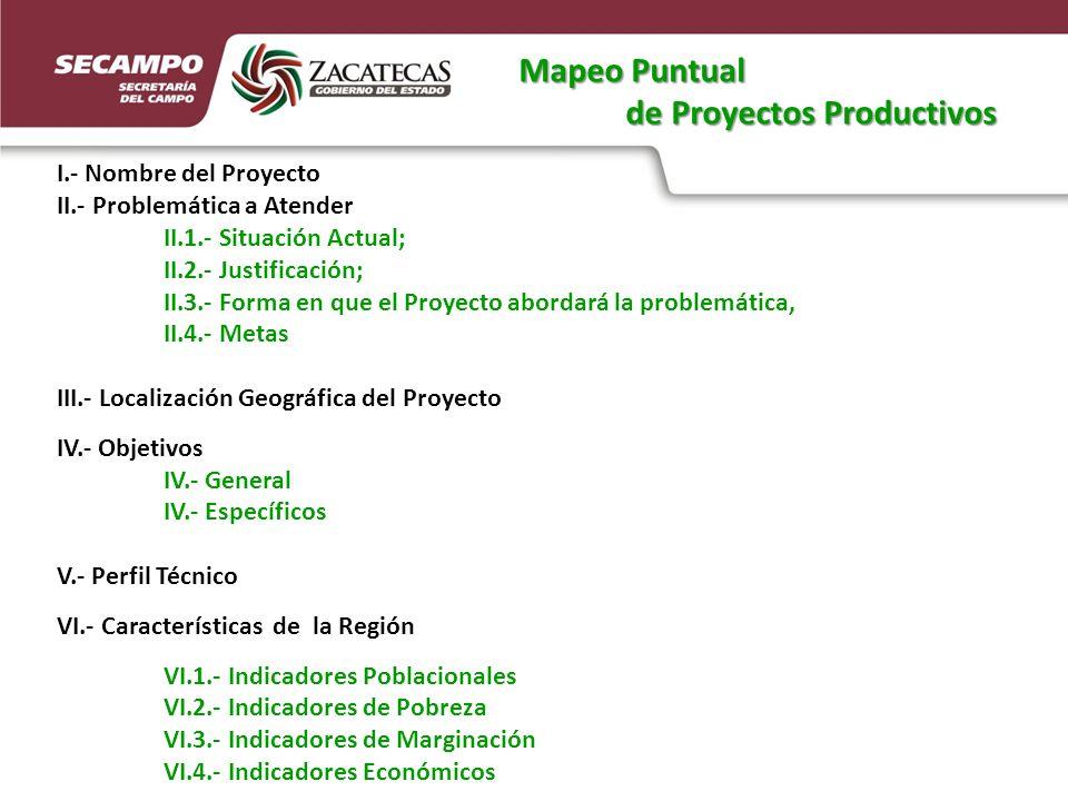I.- Nombre del Proyecto II.- Problemática a Atender II.1.- Situación Actual; II.2.- Justificación; II.3.- Forma en que el Proyecto abordará la problemática, II.4.- Metas III.- Localización Geográfica del Proyecto IV.- Objetivos IV.- General IV.- Específicos V.- Perfil Técnico VI.- Características de la Región VI.1.- Indicadores Poblacionales VI.2.- Indicadores de Pobreza VI.3.- Indicadores de Marginación VI.4.- Indicadores Económicos Mapeo Puntual de Proyectos Productivos de Proyectos Productivos
