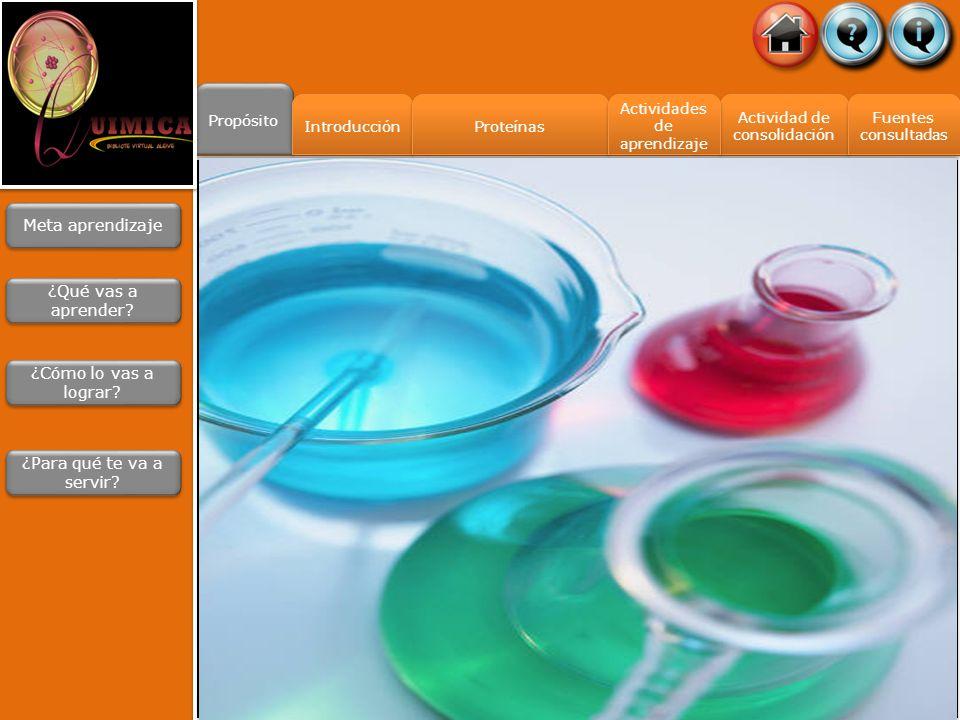 Propósito Introducción Actividad de consolidación Actividad de consolidación Fuentes consultadas Fuentes consultadas Actividades de aprendizaje Actividades de aprendizaje Proteínas