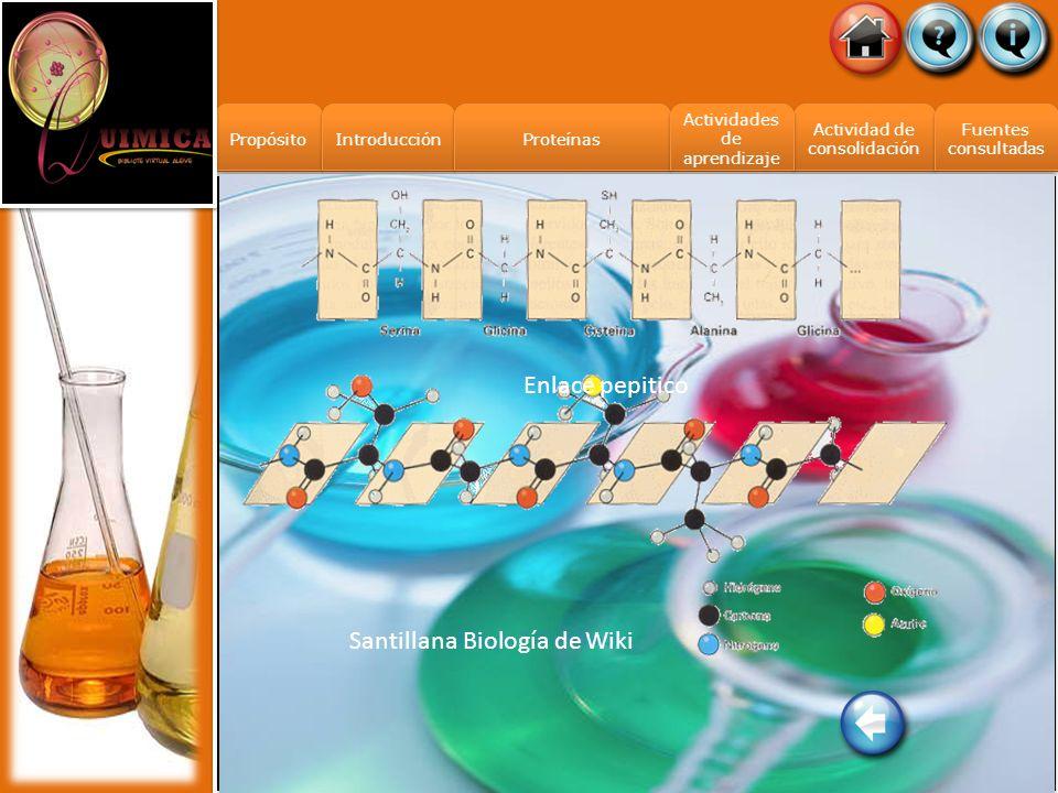 Actividades de aprendizaje Actividades de aprendizaje Propósito Introducción Actividad de consolidación Fuentes consultadas Fuentes consultadas Proteí